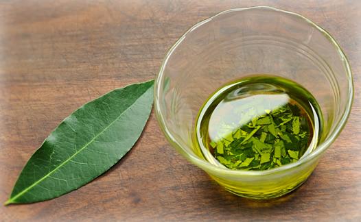 huile essentielle laurier