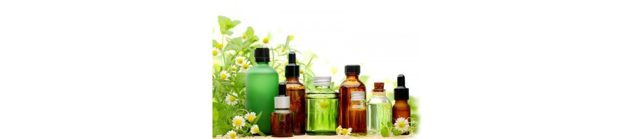 Les huiles essentielles les plus prisées pour une aromathérapie efficace et facile